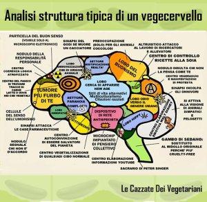 Cervello_vegano